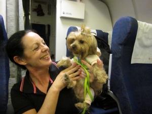 Missy on board 3